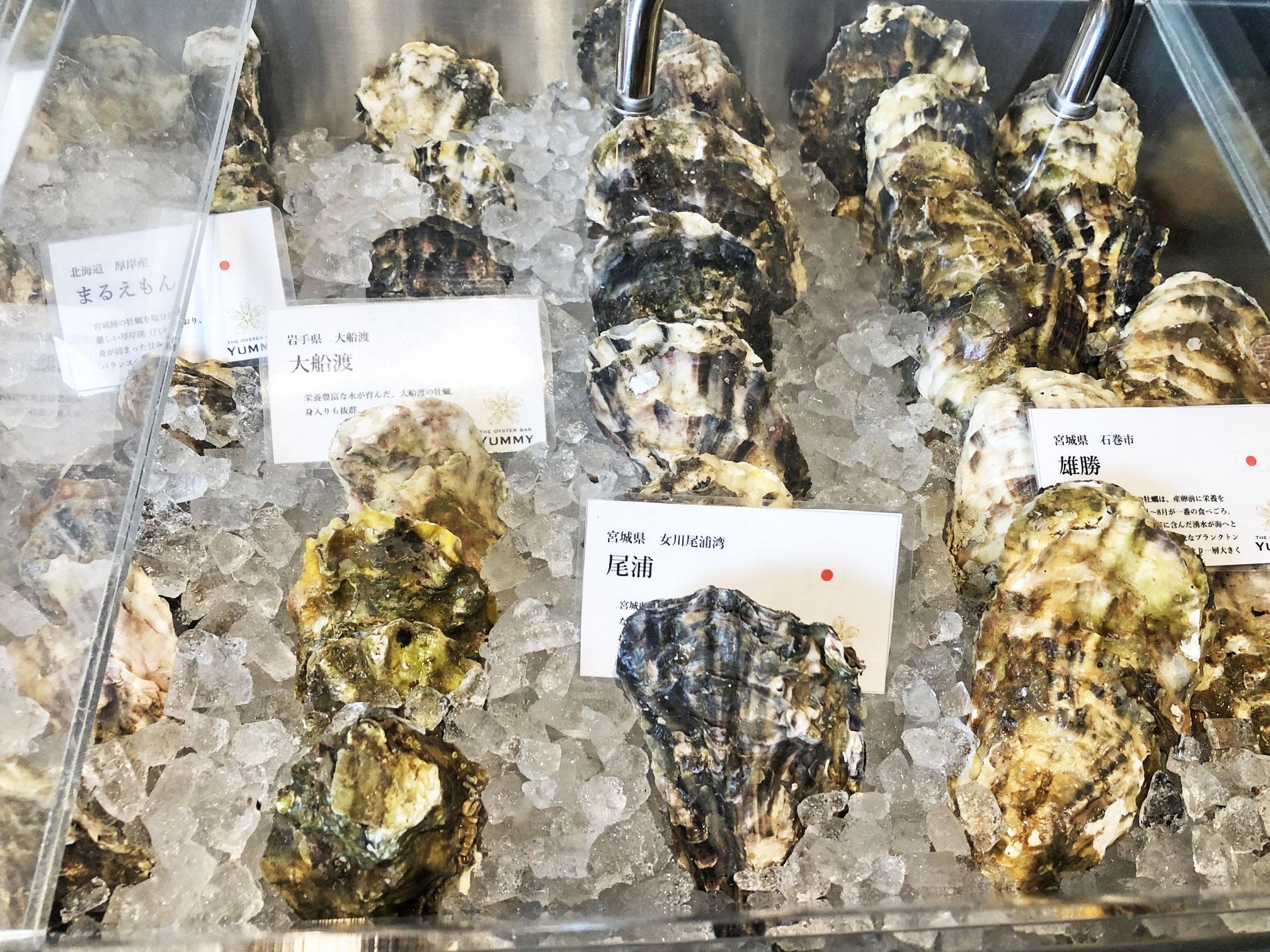 オイスターバーYUMMYの生牡蠣